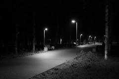 Ночные дорожки