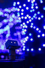 blue_danboard (ask_pic) Tags: nightphotography night 夜景 danbo danboard ダンボー
