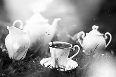 morning (dionn-k) Tags: coffee blackwhite outdoor cups fineartphotography artisticphotography artisticproductphotography coffeesplash