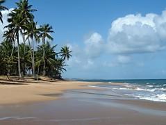 WALK IN THE MORNING (Denyliz Rodgz) Tags: beach nubes caribbean caribe