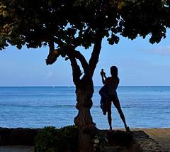 Picture-Perfect (jcc55883) Tags: silhouette hawaii nikon waikiki oahu selfie nikond3200 kalakauaavenue d3200 kuhiobeachpark
