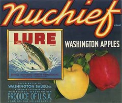 "Nuchief Lure • <a style=""font-size:0.8em;"" href=""http://www.flickr.com/photos/136320455@N08/21283676740/"" target=""_blank"">View on Flickr</a>"