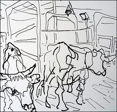 Two Steers (Kerry Niemann) Tags: bullriding apachejunction penandinklinedrawing