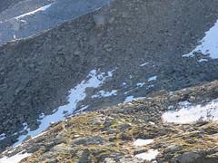 Grand_Parcours_Alpinisme_Chamonix-Edition_2014_ (31)