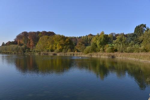 L'étang du Gris Moulin avec son effet miroir
