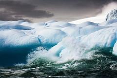 Icebergs, Melchior Islands, Antarctica 2006