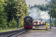 20150902_6180.jpg (Schaffner) Tags: germany de steam locomotive wernigerode steamlocomotive sachsenanhalt schmalspur harzer bahnen schmahlspur harzerschmahlspurbahnen