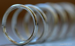 ...Key rings... (cegefoto) Tags: ringen rings tamron 90mm 104 keyrings allinarow macromondays sleutelringen 115picturesin2015