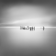 Isolated. Pier structure, Sausalito California, USA 2014. (Thibault Roland) Tags: ocean california ca longexposure sea blackandwhite bw usa cloud beach monochrome birds clouds landscape photography pier us photo sticks photographer unitedstates image sony unitedstatesofamerica fineart shift photograph le roland poles minimalism nuages tilt sausalito minimalistic fineartphotography 2014 tiltshift longueexposition landscapephotography expositionlongue firecrest a7r landscapephotographer fineartphotographer thibaultroland seascapephotographer 16stops formatthitech sonya7r wwwthibaultrolandcom