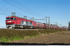 JRF_EH500-54GB_Hasuda_021214 (Catcliffe Demon) Tags: japan container railways jrf intermodal electriclocomotive eh500 jrfreight saitamaprefecture ecopower dualvoltage jr containertrains 1500v 20kv japanrailimages2014