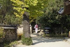 하동,최참판댁,Korea (ott1004) Tags: korea namhae 경남 hadong 최참판댁 토지 박경리 히동 koreatraditionalhouse
