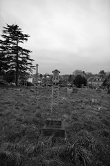 The grave of William Goldsmith (IanAWood) Tags: pinner londoncemeteries londonboroughofharrow walkingwithmynikon nikkorafs24mmf14g pinnercemetery nikondf