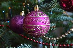 This just means Christmas (heraldeixample) Tags: barcelona christmas espaa weihnachten navidad spain bcn catalonia catalunya nol natale nadal catalua catalogna espanya catalogne albertdelahoz heraldeixample