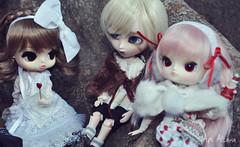 Merry Xmas! [ADAW 47/52] (Au Aizawa) Tags: fashion japanese doll dal glen eris isul byul dotori dollmeeting creatorslabel