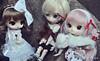 Merry Xmas! [ADAW 47/52] (Açu Aizawa) Tags: fashion japanese doll dal glen eris isul byul dotori dollmeeting creatorslabel