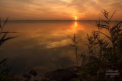 Sunset_Müritz_M/V (b.stanni) Tags: light sunset lake water germany landscape deutschland see licht wasser flickr sonnenuntergang outdoor lakeside ufer landschaft mv