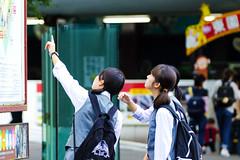Junior High school Girls in Ueno Zoo :  (Dakiny) Tags: 2016 autmn september japan tokyo taito ueno outdoor city street park uenopark zoo uenozoo people group portrait girl younggirl schoolgirls woman bokeh nikon d7000 sigma apo 70200mm f28 ex hsm apo70200mmf28exhsm sigmaapo70200mmf28exhsm nikonclubit