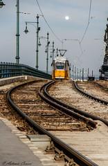 In arrivo... (antonio.canoci) Tags: tram budapest 100d 1585usm canon binari ungheria