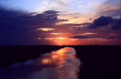 End of the Bend (PelicanPete) Tags: sunset afterglow red glow reflection river cloudscape cloudburst shadow calm serene nature beauty natural hometown florida unitedstates usa floridaeverglades riverofgrass open space colorful angle dramatic composition autumn2016 10216 outdoor sky distort southflorida broward coralspringsflorida dusk cloud water rainstorm levels heatwaves distortion strong intenseuplight landscapephotography riverscapephotography waterscapephotography artisticsunsetphotography field landscape rain coast shore backlit endofthebend fall flickrdiamond dmslair diamondclassphotographer