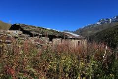 abandonne (bulbocode909) Tags: valais suisse bourgstpierre valdentremont maisons ruines abandon montagnes nature fleurs automne vert bleu