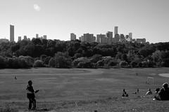 go fly a kite! (Mr Kevino) Tags: toronto bw broadview kite park