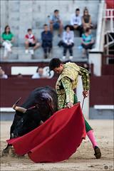 JP-21082016-184852-4497-como-objeto-inteligente-1 (Manon71) Tags: 21deagostode2016 davidgalvn bullfight bulls lasventas toreros toros espaa spain