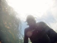 GOPR5951 (ambrogi_taubate) Tags: naturezaselvagem marinha mergulhando ubatuba sp brasil naturezamarinha fantstica apneia 10m setembro primavera 2016