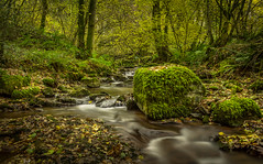 Pwll y Wrach (Ian Emerson) Tags: waterfall water autumnal autumn november outdoor wales talgarth landscape moss rocks leaves colourful colours hoya ndx400 canon 1855mm lightroom