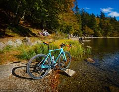 TCX at the lake (Torsten Frank) Tags: crossrad deutschland fahrrad feldsee giant hochschwarzwald mittelgebirge radrennen radsport schwarzwald see tcxadvancedpro1 votecgravelfondo wasser badenwrttemberg sdschwarzwald bike bicycle crossbike