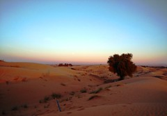 Sunset above the desert (1), UAE /    (1),  (Irina.yaNeya) Tags: eau sunset desert sunsetabovethedesert uae sand puestadesol desierto