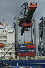 Container crane @ Container terminal @ Harbour Tour @ Spido @ Rotterdam (*_*) Tags: rotterdam netherlands nederland city europe october autumn fall 2016 cloudy morning spido nieuwemaas river cruise boat ship harbour tour container cargo transshipment harbor port