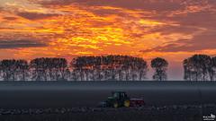 At work, no time to enjoy a sunset (BraCom (Bram)) Tags: bracom sunset zonsondergang trekker tractor zaaien sow farmer boer trees bomen field akker cloud wolk dike dijk johndeere mist fog herfst fall autumn herkingen dirksland goereeoverflakkee zuidholland nederland southholland netherlands holland canoneos5dmkiii widescreen canon 169 canonef24105mm bramvanbroekhoven nl