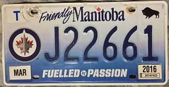 MANITOBA, WINNIPEG JETS NHL HOCKEY ---LICENSE PLATE (woody1778a) Tags: winnipeg football cfl sports transportation manitoba 2016 canada canadian licenseplate numberplate registrationplate cool alpca1778 registration