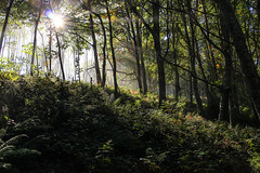 Igeldo - Orio (Yoana SS) Tags: igueldo orio paseo mendi martxa monte euskadi pais vasco gipuzkoa
