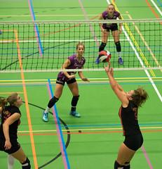 1B260660 (roel.ubels) Tags: vv utrecht eurosped galgewaard volleybal volleyball 18 finale nationale beker