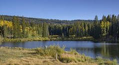 USA Colorado Grand Mesa National Forest (charles.duroux) Tags: nyip