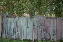 Weathered Fence (sswj) Tags: weathered woodfence sananselmo marincounty northerncalifornia oldwood weatheredwood gate composition dslr fullframe nikon nikkor28300mm scottjohnson existinglight availablelight naturallight bamboo rustedhinges rustedmetalroof