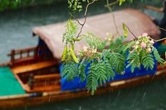 Watertown Zhouzhuang (mdp10yy) Tags: watertown zhouzhuang suzhou china