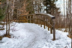 Right is Wrong (Jori Samonen) Tags: path footpath railing wooden snow tree viikki helsinki finland nikon d3200 1050 mm f28
