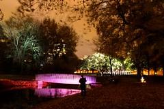 Glow Science 2016 (TU/E Eindhoven) (ToJoLa) Tags: 2016 canon canoneos60d herfst kleuren licht lichtstad lichtfestival city glow glowscience2016 fairytale