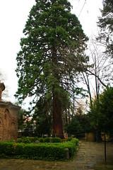 Sofia - Bulgaria (ggoyos) Tags: sofia bulgaria rila 2016