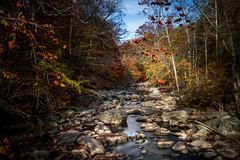 rock creek (kderricotte) Tags: longexposure sonya6000 1018mm rockcreekpark maryland dc washingtondc creek rocks water stream neutraldensityfilter leebigstopper