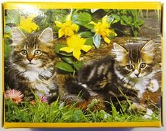 Two Tabbies - the box (Leonisha) Tags: puzzle jigsawpuzzle puzzleschachtel puzzlebox