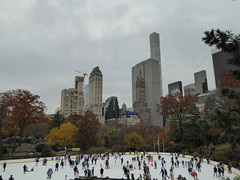 Central Park New York November 2016 (1229) (Richie Wisbey) Tags: new york central park manhattan ulmsted man made vista view spectacular miles walks lakes ice rink trump feeding sparrows hot dog american space open public beauty bow bridge oak trees grass richie richard wisbey flickr explore exploring zoo