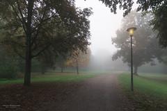 Herbstnebel im Domgarten.jpg (Knipser31405) Tags: speyer domgarten nebel herbst orte 2016