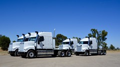 New Ivecos (quarterdeck888) Tags: iveco 7800 ivecopowerstar iveco7800 powerstar7800 newtruck delivery newdelivery bobtailtrucks transport semi class8 overtheroad lorry heavyhaulage cartage haulage bigrig jerilderietrucks jerilderietruckphotos nikon d7100 frosty flickr quarterdeck quarterdeckphotos roadtransport highwaytrucks australiantransport australiantrucks aussietrucks heavyvehicle express expressfreight logistics freightmanagement outbacktrucks truckies