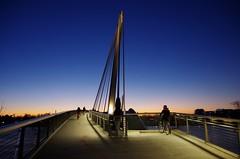 La passerelle des Deux Rives (Thierry.Vaye) Tags: mimram passerelle kehl strasbourg lerhin fleuve pont pentax k5ii lesdeuxrives