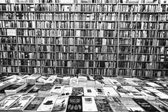 book horizon