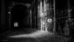 Abandoned Snow Shed (Royer_Dirt) Tags: california bw abandoned train graffiti blackwhite tahoe tunnel truckee donnerlake snowshed fujifim fujifilmxt1