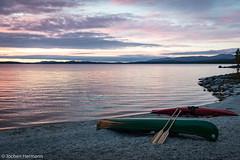 Femunden und Jmtland-363 (jo.hermann) Tags: nature norway landscape grey see norge scenery outdoor schweden norwegen canoe owl mohawk sverige kanu clearwater gatz necky paddeln femunden eveningmood femund feragen